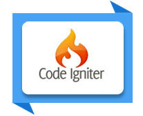 codeignitor training institute meerut